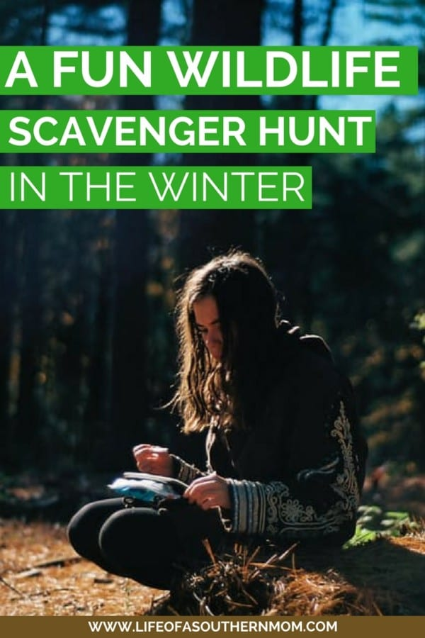 One of my favorite ways to get the kids out and about in the winter is to encourage a winter wildlife scavenger hunt!